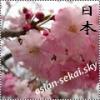 Asian-Sekai