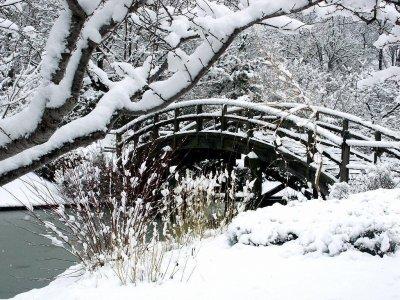 L'hiver :)