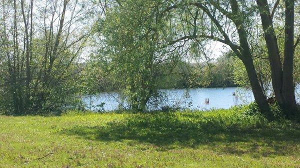 Petite balade au lac de peronne.