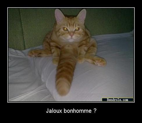 Jaloux ? :P