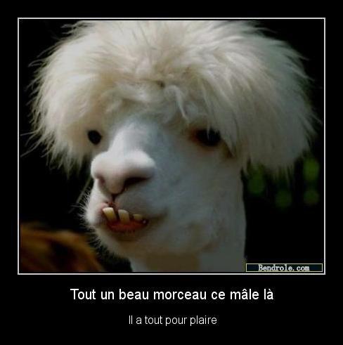 Mignon :)