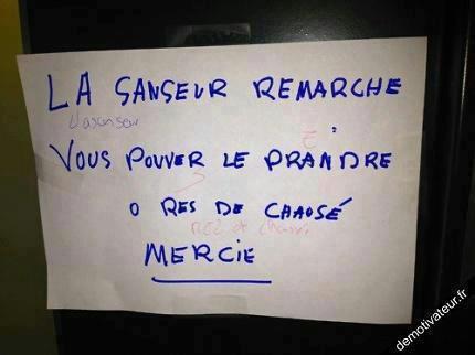 Ravage de la langue francaise