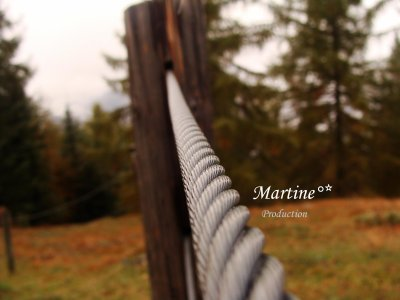 Martine°*Production