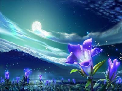 L'aurore d'une fleure