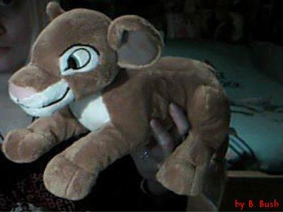 Disneyland 2007 2e fois (suite et fin)