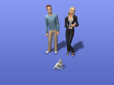 Les Sims 2 (aide mémoire d'idées pour jouer)