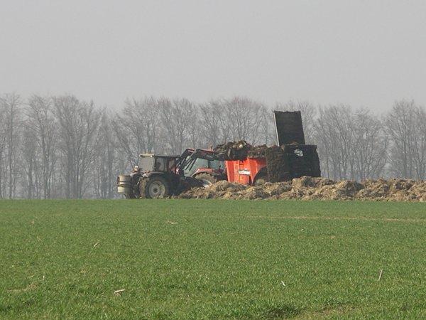 épandage de fumier près de chez moi avec un Mc Cormick 115 et un épandeur Sodimac Rafal 3200