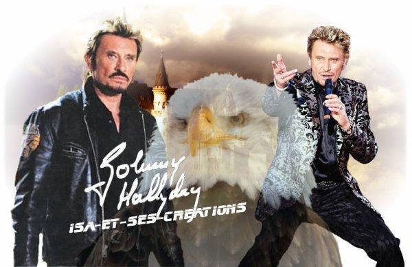 MES CREA : JOHNNY HALLYDAY