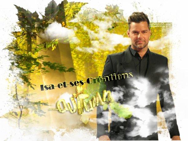 Suite : Mes nouvelles créa d'Automne 2014 : Tal - Ricky Martin - Patrick Bruel - Tony Carreira