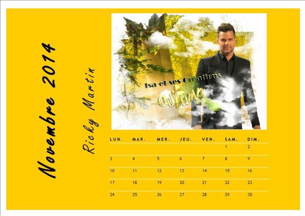 MES CALENDRIERS NOV. 2014 AVEC VOS STARS PREFEREES  : Ricky Martin, Shakira, Tal, M. Pokora, Johnny Hallyday et Hélène Ségara