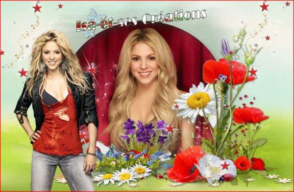 Mes 2 nouvelles créations Printemps : Shakira