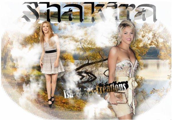 Mes nouvelle créations  : SHAKIRA
