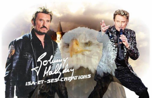 Mes créations de Johnny et Elvis