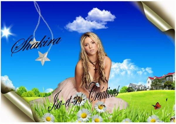 Mes nouvelles créations : Shakira - Rihanna - Ricky Martin - Shemar Moore - Amel Bent