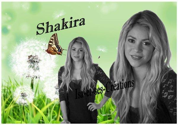 Mes nouvelles créa : Johnny - Louane - Enrique - Kendji - Ricky - Shemar - Shakira