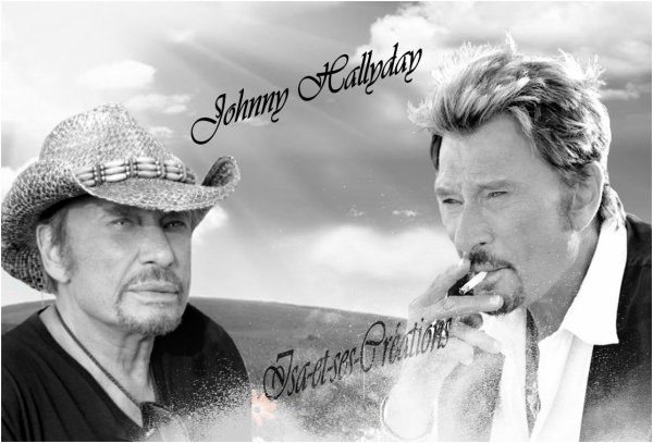Mes nouvelles créations : JOHNNY HALLYDAY
