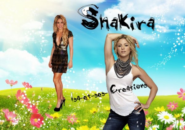 Mes nouvelles créations : SHAKIRA
