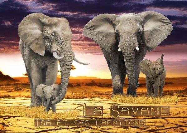 Mes nouvelles créations : LA SAVANE par isa-et-ses-Créations