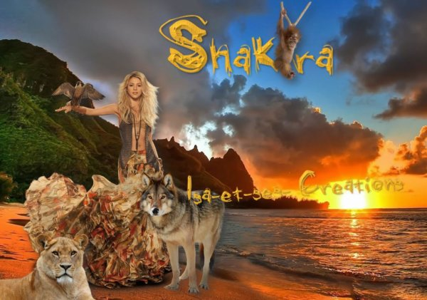 Mes nouvelles créa : SHAKIRA