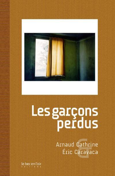 Les garçons perdus d'Arnaud Cathrine