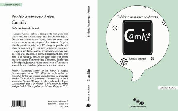 Camille, roman panique