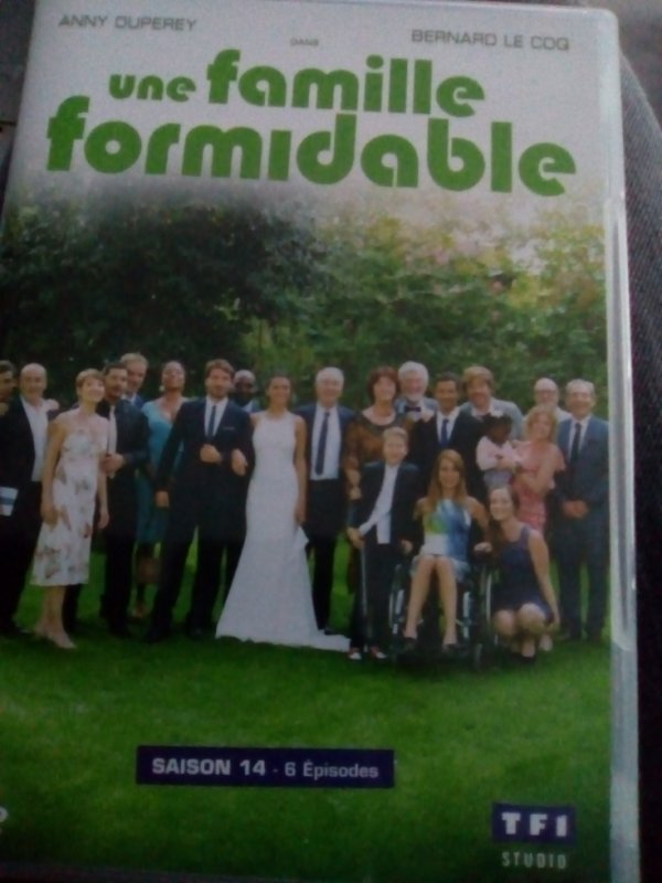 DVD Une Famille Formidable