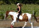 Photo de Horses-Dream56
