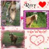 Montage Roxy je taime I Love You Roxy!!