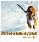 Photo de Heart-of-Animals