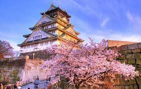 Questionnaire sur le japon ! (=^w^=)