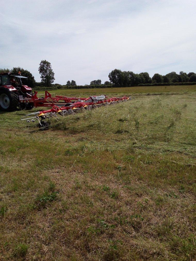 fête de l'herbes a Avesnnes