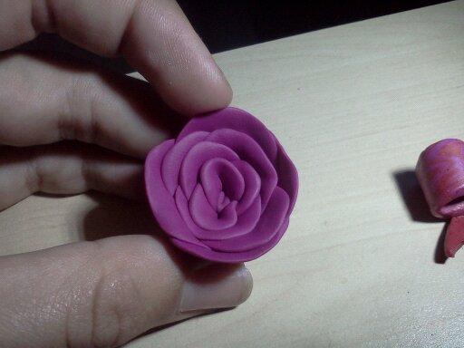 Ma rose rose !