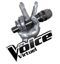 Photo de TheVoice-Virtuel
