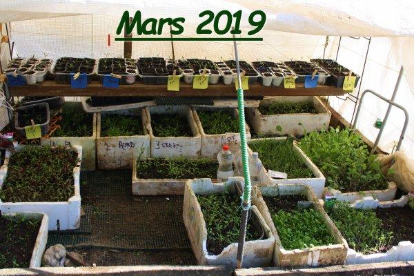 hop la mars 2019 le jardin mittel
