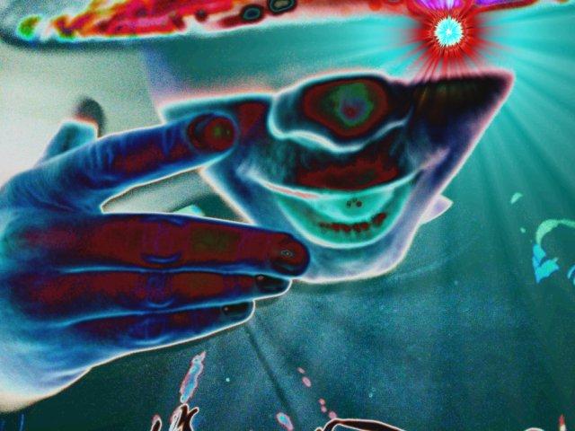 Blog de In-Death-World