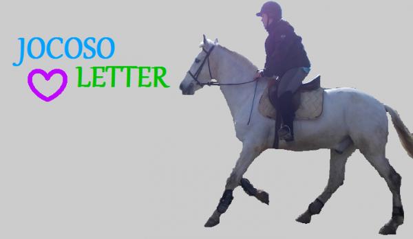 Sans lui , sans ce cheval formidable ma vie n'aurais plus aucun interet ...