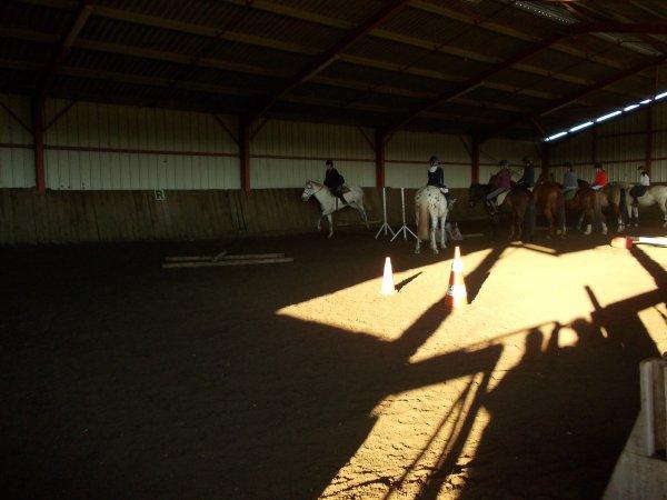 Votre cheval vous ressemble comme votre reflet dans un miroir . Ce n'est peut être pas le mien mais c'est ce que je ressent ...