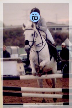 Être heureux à cheval , c'est être entre ciel et terre , à une hauteur qui n'existe pas .   ___________Jérôme Garcin
