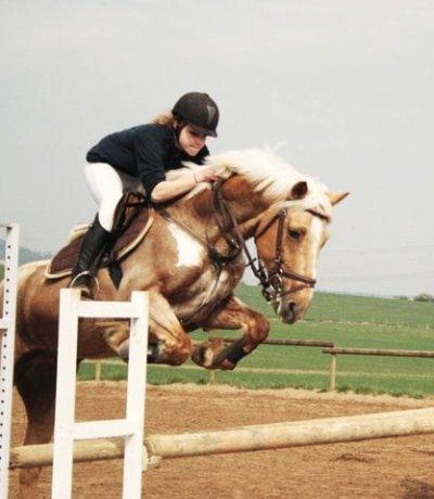 Il n'y a pas de secrets aussi intimes que ceux d'un cheval et de son cavalier .   ___________Robert S. Surtees
