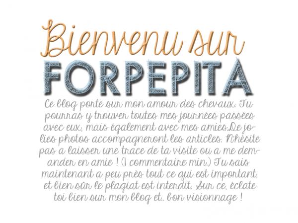 ◊ ForPepita ◊
