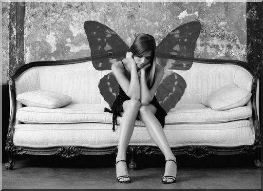 Ailes de papillons