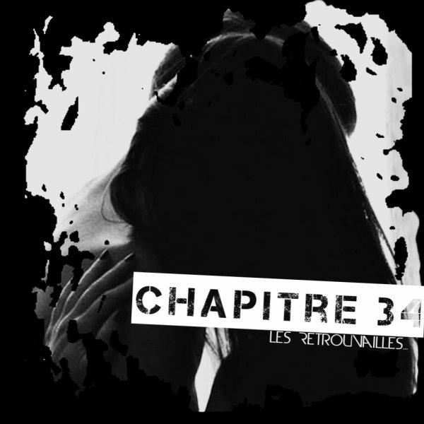 Chapitre 34 : Les Retrouvailles ... .