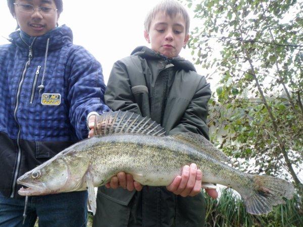 Pêche du Sandre en étang