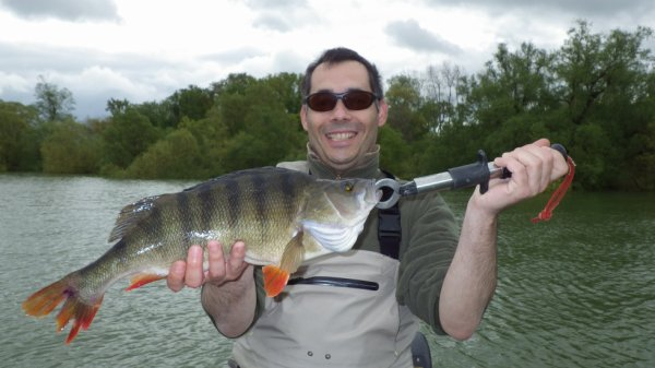Pêche de grosse perche, du lac du Der!