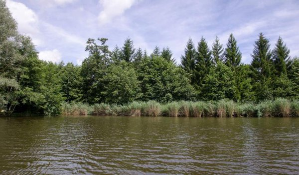 Location d'étang avec chalet