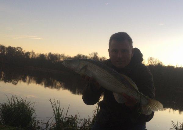 Sandre du Domaine du grand étang de Narcy.