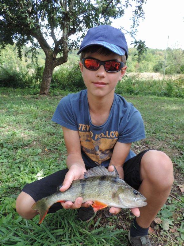 Pêche au drop shot
