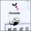 NewcastleBBL