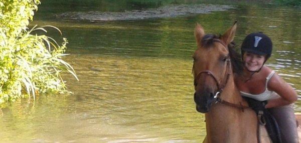 """De temps en temps, les gens me disent : """"Calme toi, c'est juste un cheval"""", ou """"c'est beaucoup d'argent pour juste un cheval"""". Ils ne comprennent pas la distance parcourue, le temps passé ou les coûts impliqués pour """"juste un cheval"""". Certains de mes moments dont j'ai le plus de fierté sont arrivés grâce à """"juste un cheval"""". De nombreuses heures sont passées, et ma seule compagnie était """"juste un cheval"""", mais je ne me suis pas sentie une seule fois insignifiante. Certains de mes moments les plus tristes ont été amenés par """"juste un cheval"""", et dans ces jours d'obscurité, le doux contact de """"juste un cheval"""" me réconforte et me donne une raison de surmonter la journée.  Si vous aussi, vous pensez que c'est """"juste un cheval"""", alors vous pourrez surement comprendre des expressions comme """"juste un ami"""", """"juste un lever de soleil"""" ou """"juste une promesse"""".  """"Juste un cheval"""" apporte à ma vie l'essence même de l'amitié, de la confiance et de l'amour. """"Juste un cheval"""" apporte la compassion et la patience qui font de moi une meilleure personne. A cause de """"juste un cheval"""", je me lèverai tôt et regarderai le futur pleine d'envie.  Ce n'est pas """"juste un cheval"""" mais une incarnation de tous les espoirs et les rêves du futur, des tendres mémoires du passé, et de la pure joie du moment. """"Juste un cheval"""" fait ressortir ce qui est bon en moi et détourne mes pensées de moi-même et des soucis de la journée.  """"Juste un cheval"""" qui me permet de rester """"juste une femme""""."""