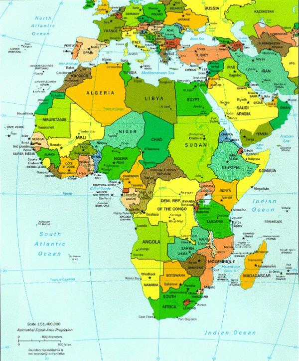 C'EST L'AFRIQUE  PATRON   1